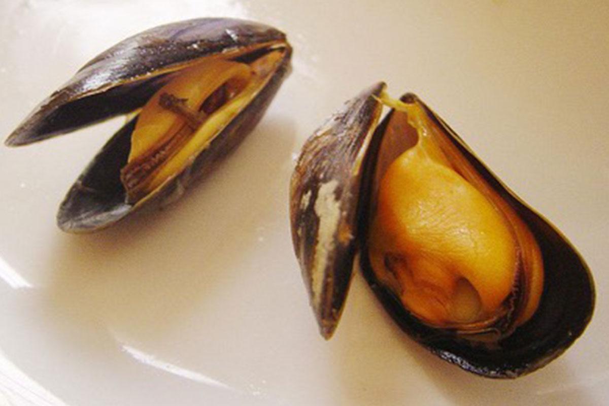 Mejillones en Paella de Marisco